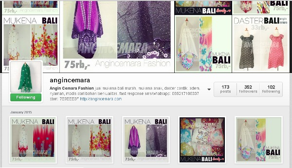 Contoh halaman Instagram @angincemara sebagai tempat berjualan online.